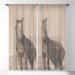 Wild_Horses Sepia 3501 - Nevada Sheer Curtain