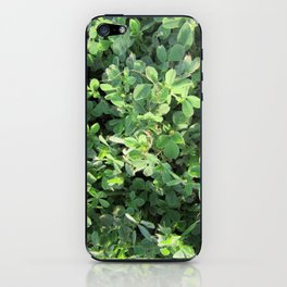 Peaceful Contemplations iPhone Skin