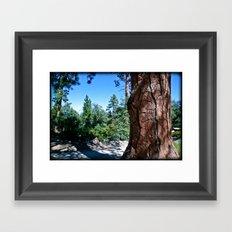 Camp Tree Framed Art Print