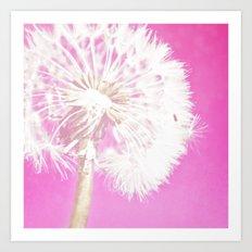 Hot Pink Dandelion Art Print