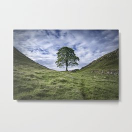 Return to Sycamore Gap Metal Print