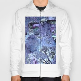 My Life in the Bush of Ghosts Hoody