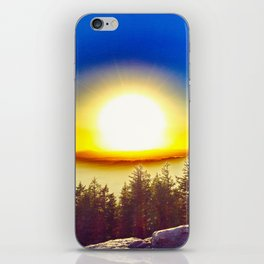Oregon Wasteland iPhone Skin
