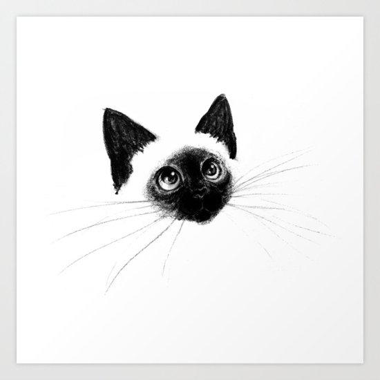 Curious Siamese Kitten Art Print