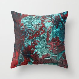 Closer // acrylic texture painting, red & teal Throw Pillow