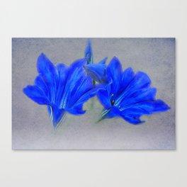 Painted Blue Gentians Floral Canvas Print