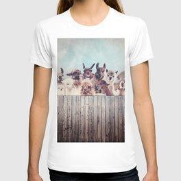 ALPACA ALPACA ALPACA T-shirt