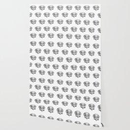 Owl Skull sketch study Wallpaper