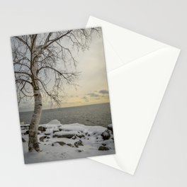Curves of the Silver Birch by Teresa Thompson Stationery Cards