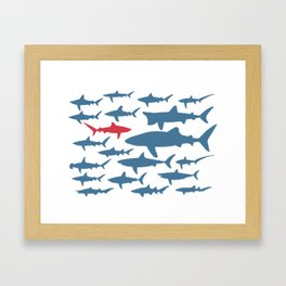 Swim with sharks Framed Art Print