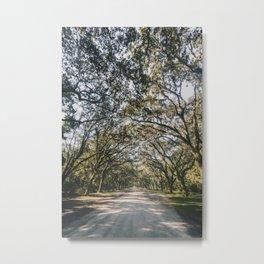 Wormsloe Live Oak Avenue - Savannah Metal Print