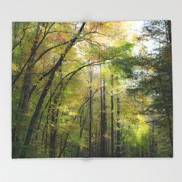 Trees in October Throw Blanket