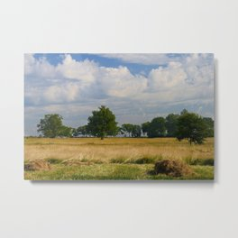 Landscape with a mowed grass Metal Print
