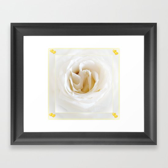 Snow white rose Framed Art Print
