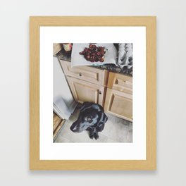 Sunday in the kitchen with Kai Framed Art Print