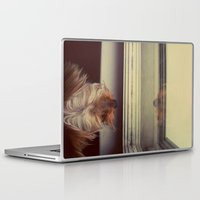 yorkie Laptop & iPad Skins featuring Yorkie Daydreaming by Kirsten Renfroe Photography