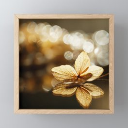 Beautiful Glow Flower Reflection with Bokeh #decor #society6 #buyart Framed Mini Art Print