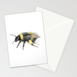 White-tailed bumblebee Stationery Cards
