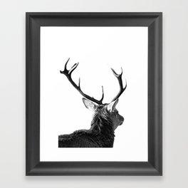 Hey Deer Framed Art Print
