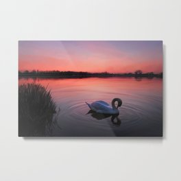 Swan on the lake Metal Print
