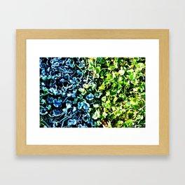 Hot or cold Framed Art Print