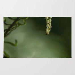 Nature's Helper Rug