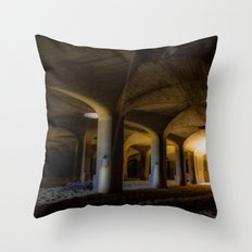 Time passing in the cells Throw Pillow