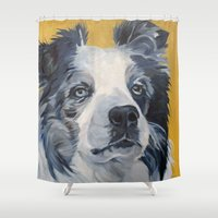 border collie Shower Curtains featuring Belle the Border Collie Dog Portrait by Barking Dog Creations Studio