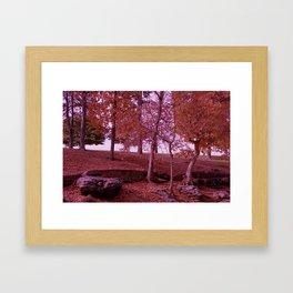 A Red Fall Framed Art Print