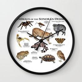 Animals of the Sonoran Desert Wall Clock