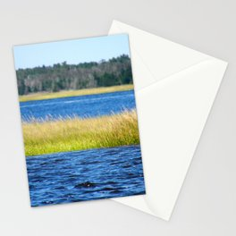 Bay Grasses Stationery Cards