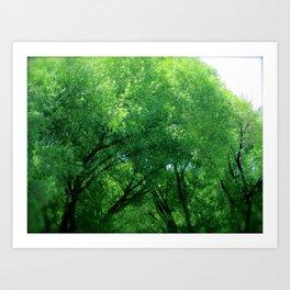 Tree Dance Turns to Rain Dance  Art Print