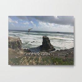 Muriwai Beach Metal Print