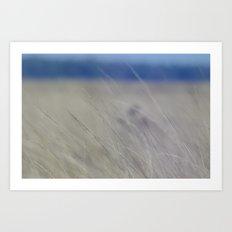 over water. Art Print