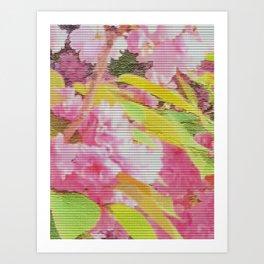 cherry blossom tiles Art Print