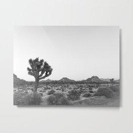 JOSHUA TREE / California Desert Metal Print