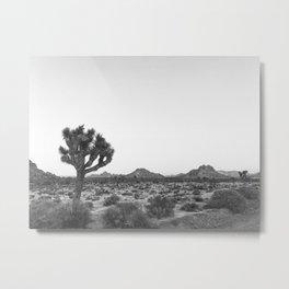 JOSHUA TREE / California Desert Metal Print