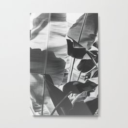 Black and White Banana Leaf Metal Print