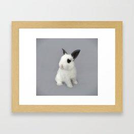 Little Rabbit Framed Art Print