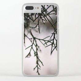 Sparkling Raindrops Dripping off Pine Clear iPhone Case