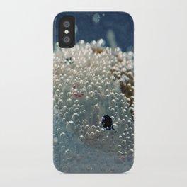 Polar freeze iPhone Case