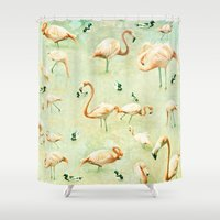 flamingos Shower Curtains featuring Flamingos by Lisa Argyropoulos