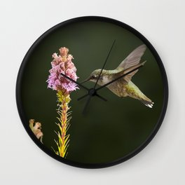 Hummingbird and flower II Wall Clock