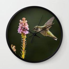 Hummingbird and flower II Wall Clock