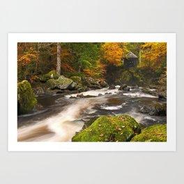 II - River through autumn colours at the Hermitage, Scotland Art Print