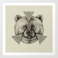 'Natural Symmetry' Art Print