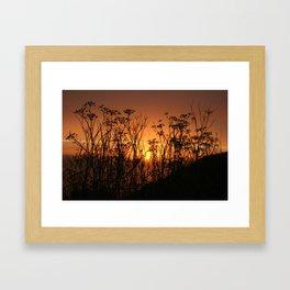Sunset Over the Fennel Framed Art Print