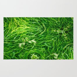 The Mystery Of The Grass Rug