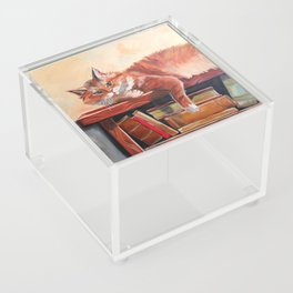 Red cat on a bookshelf Acrylic Box