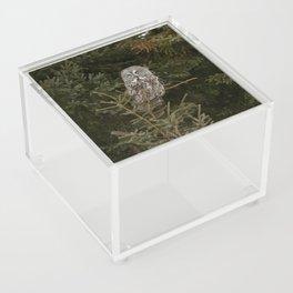 Pine Prince Acrylic Box